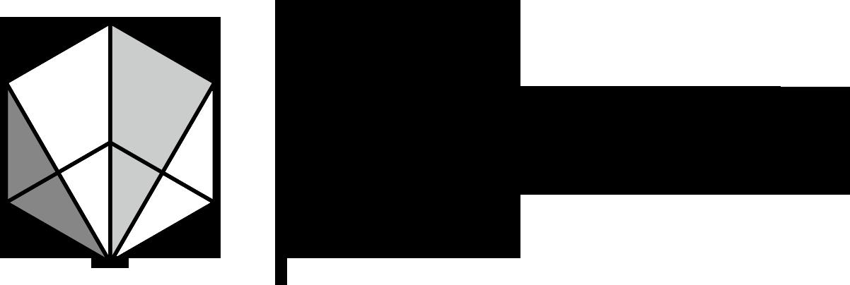 VIZFORYOU